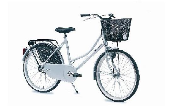 Bicicletta Holland Gloria Annunci Biciclette Vendita Bici Nuove