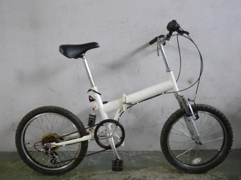 Bicicletta pieghevole lussuosa #2121A